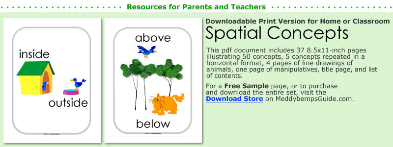 After You Explore Spatial Concepts Discover More Of